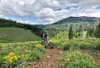 Photo of man riding his mountainbike in Rick's Basin, Grand Targhee Resort