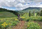 Photo of man riding his mountainbike in Rick's Basin, Grand Targhee Resort
