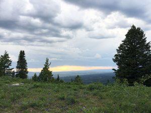 Photo from Quakie Ridge trail at Grand Targhee Resort. ©2016 Canyon Media